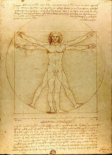vitruvian-man-large